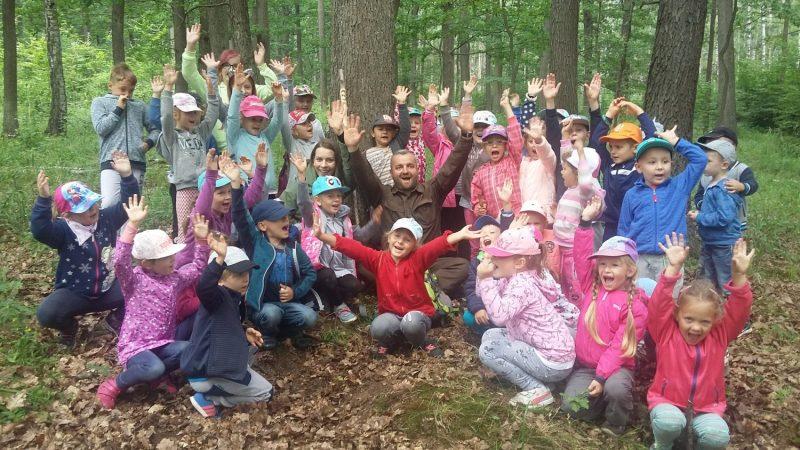 Wycieczka do Siedmicy – poznajemy las