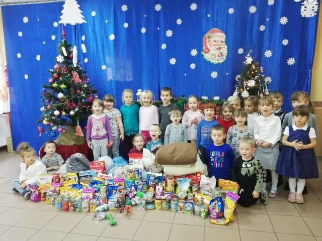 Pomagamy zwierzętom – podopiecznym TOZ w Jaworze