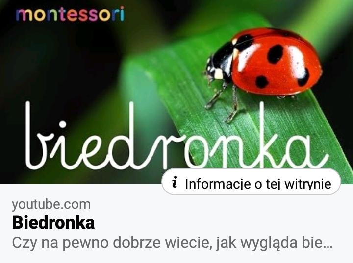 14.05.2020r. – Mieszkańcy łąki – biedronka – fb relacje