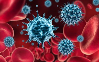 Procedury na czas pandemii COVID-19