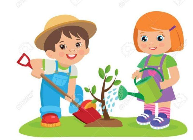 Dziś zadbamy o ogródek – 9.04.2021r. – fb